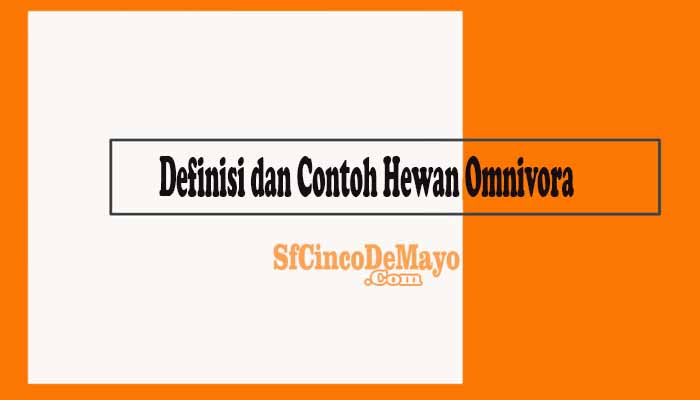 Definisi dan Contoh Hewan Omnivora